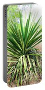 Afternoon Yucca Portable Battery Charger