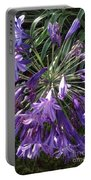 Agapanthus Flowers In Purple - New And Old Portable Battery Charger