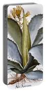 Agave, 1613 Portable Battery Charger