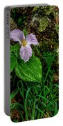 Aged White Trillium With Raindrops Portable Battery Charger