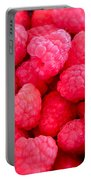Agenda For Today ... Raspberry Jam Portable Battery Charger