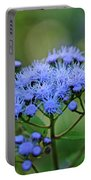 Ageratum Blue Portable Battery Charger