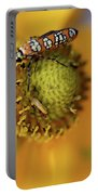 Ailanthus Webworm Moth #5 Portable Battery Charger