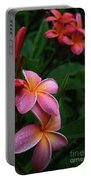 Akeakamai Pua Melia Tropical Plumeria Portable Battery Charger