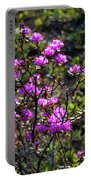 Alaska Wildflowers Portable Battery Charger