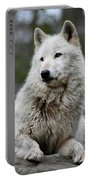 Alawa The Wolf Rests Portable Battery Charger