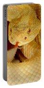 Albino Brazilian Rattlesnake Portable Battery Charger