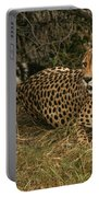 Alert Cheetah Portable Battery Charger
