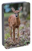 Alert Fawn Deer In Shiloh National Military Park Tennessee Portable Battery Charger