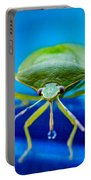 Alice The Stink Bug 4 Portable Battery Charger