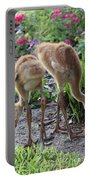 All Legs Sandhill Colts Portable Battery Charger