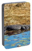 Alligator In The Sun Portable Battery Charger