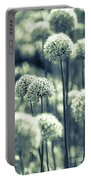 Allium 3 Portable Battery Charger