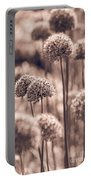 Allium 4 Portable Battery Charger