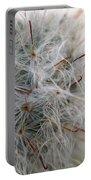 Allium Sativum Portable Battery Charger