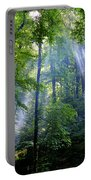 Allschwiler Wald Portable Battery Charger