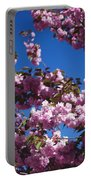 Almond Flowers Portable Battery Charger