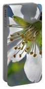 Almonds In Lachish 1 Portable Battery Charger