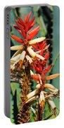 Aloe Bloom Desert Garden Portable Battery Charger