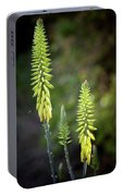 Aloe Vera Blooms Portable Battery Charger