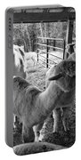 Alpaca Meeting  Portable Battery Charger