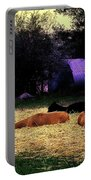 Alpacan Twilight Portable Battery Charger