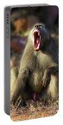 Alpha Baboon Yawning, Kruger Park Portable Battery Charger