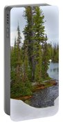 Alpine Lake Area Portable Battery Charger