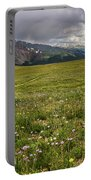 Alpine Meadow Before Mount Guyot Portable Battery Charger