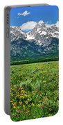 Alpine Spring Portable Battery Charger