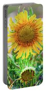 Alpine Sunflower In Summer Portable Battery Charger
