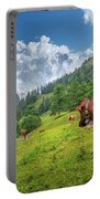 Alpine Travel Stories Portable Battery Charger