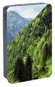 Alpine View In Green Portable Battery Charger