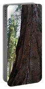 Alta Vista Giant Sequoia Portable Battery Charger