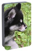 Alusky Puppy Tip Toeing Through Green Foliage Portable Battery Charger