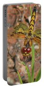 Amanda's Pennant Dragonfly Female Portable Battery Charger