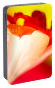 Amaryllis Shadow Abstract Flower With Shadow On Red And Yellow Portable Battery Charger