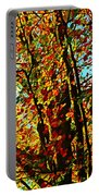 Amazing Fall Foliage Portable Battery Charger