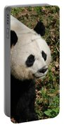 Amazing Giant Panda Bear Sitting In A Grass Field Portable Battery Charger