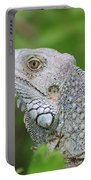Amazing Gray Iguana Sitting In The Top Of A Bush Portable Battery Charger
