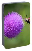 Amazing Insects - Hummingbird Moth Portable Battery Charger