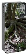 Amazing Roots Portable Battery Charger