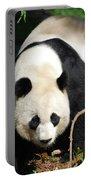 Amazing Sweet Chinese Giant Panda Bear Walking Around Portable Battery Charger