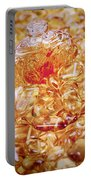 Amber #2051 Portable Battery Charger
