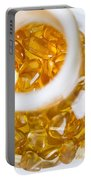 Amber #3069 Portable Battery Charger