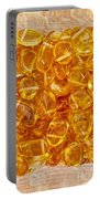 Amber #4903 Portable Battery Charger
