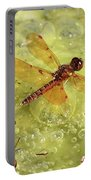 Amber Dragonfly On The Pond Portable Battery Charger
