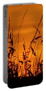 Amber Sundown Meadow Grass Silhouette  Portable Battery Charger