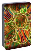Amber Waves Marles Portable Battery Charger
