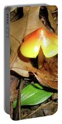 Amberina Mushroom - Tiny Jewel In The Forest Portable Battery Charger